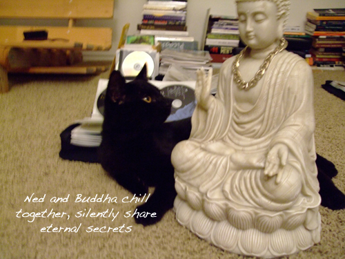 Ned enjoys Buddha's company.